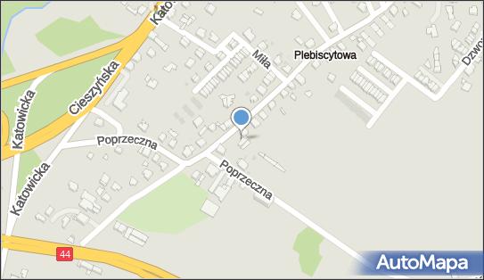 Akademia Malucha Zaczarowana Kraina, Plebiscytowa 34, Mikołów 43-190 - Przedsiębiorstwo, Firma, numer telefonu, NIP: 6351657668