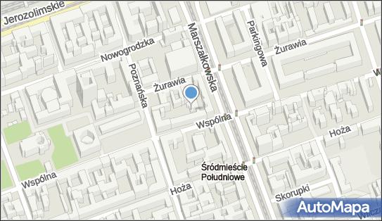 Arionn, ul. Wspólna 50A, Warszawa 00-514 - Przedsiębiorstwo, Firma, NIP: 5252546793