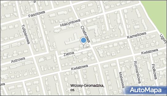 Aura, ul. Zielna 17, Toruń 87-100 - Przedsiębiorstwo, Firma, numer telefonu, NIP: 8792433858