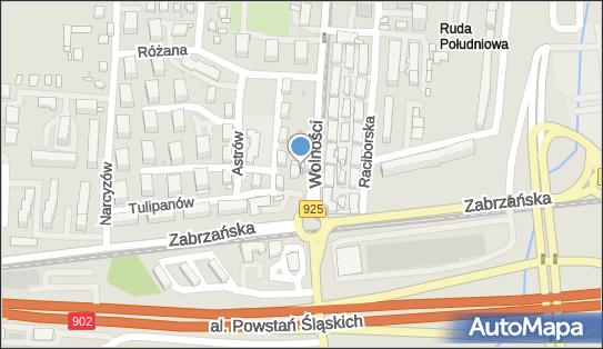 Benevolent, Wolności 107, Ruda Śląska 41-700 - Przedsiębiorstwo, Firma, numer telefonu, NIP: 6412528601