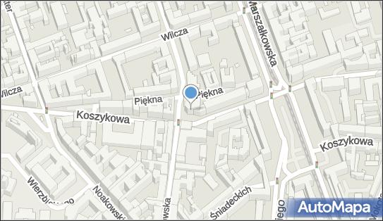 Biznes Net, ul. Koszykowa 54, Warszawa 00-675 - Przedsiębiorstwo, Firma, numer telefonu, NIP: 5272450731