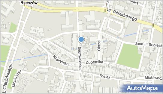 Euro Media, Grunwaldzka 18, Rzeszów 35-068 - Przedsiębiorstwo, Firma, numer telefonu, NIP: 8133572627