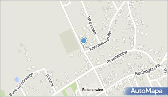 F.H.U.Zielona Drogeria, ul. Witolda Gombrowicza 9A 41-936 - Przedsiębiorstwo, Firma, NIP: 6450200245