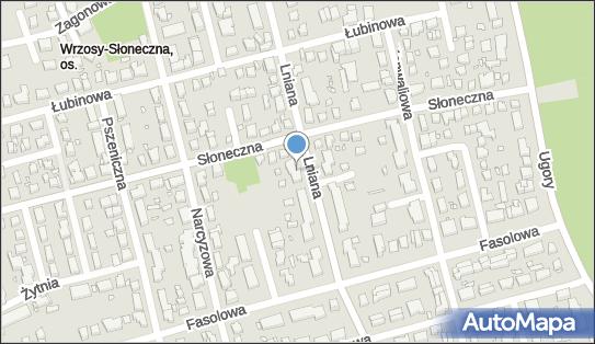 Firma As, Lniana 35, Toruń 87-100 - Przedsiębiorstwo, Firma, numer telefonu, NIP: 9560000945