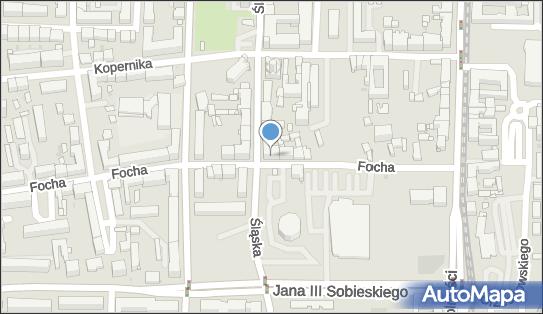 Firma Handlowa Staś Urszula Puto, ul. Focha 20, Częstochowa 42-217 - Przedsiębiorstwo, Firma, NIP: 7721816793