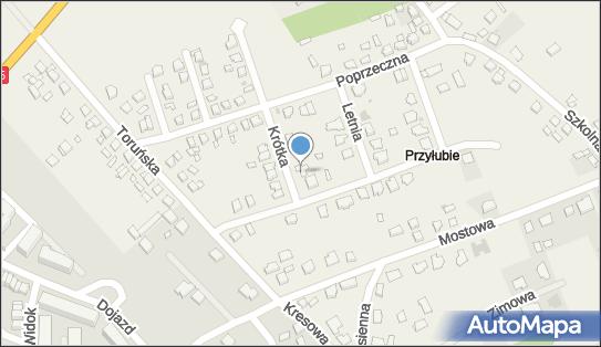 Firma Konserwatorska DR, ul. Krótka 9, Grębocin 87-122 - Przedsiębiorstwo, Firma, NIP: 8791107039