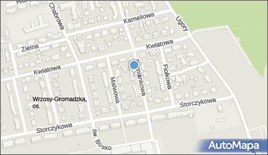Firma Transportowo Handlowa Usługowa Trawer, Rumiankowa 17, Toruń 87-100 - Przedsiębiorstwo, Firma, NIP: 9562054684