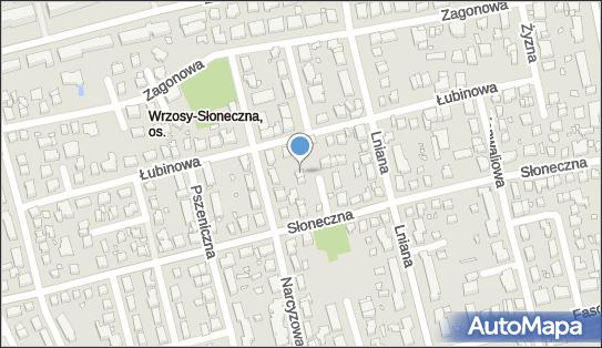 Firma Usługowo Handlowa Szudi Brothers, Chmielna 45, Toruń 87-100 - Przedsiębiorstwo, Firma, NIP: 9561675148