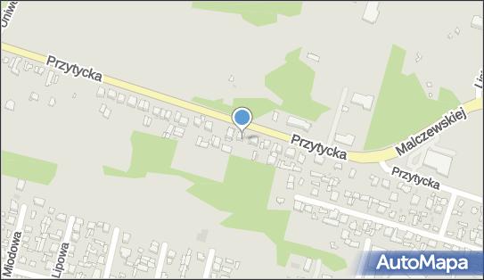 G O Ś Przedsiębiorstwo Transportowo Spedycyjne, ul. Przytycka 31 26-600 - Przedsiębiorstwo, Firma, NIP: 7961831734
