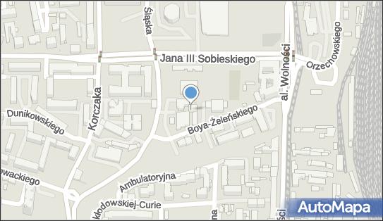 Gabinet Masażu, ul. Boya-Żeleńskiego 10, Częstochowa 42-217 - Przedsiębiorstwo, Firma, NIP: 7721629789