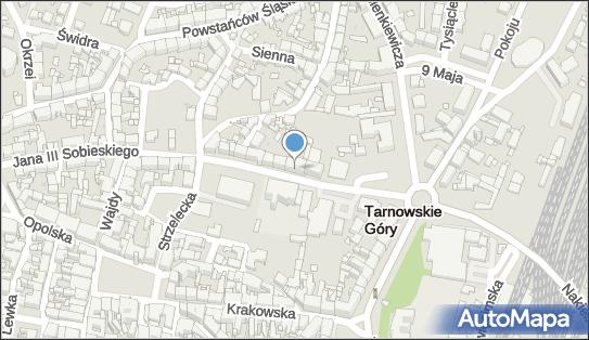 Gabinet Okulistyczny, ul. Jana III Sobieskiego 4, Tarnowskie Góry 42-600 - Przedsiębiorstwo, Firma, NIP: 6451091462