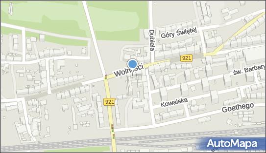 Indywidualna Praktyka Lekarska w Miejscu Wezwania, ul. Wolności 237 41-800 - Przedsiębiorstwo, Firma, NIP: 6481151128