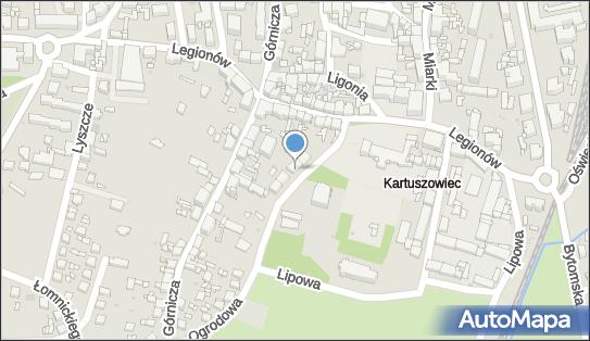 Intex, ul. Ogrodowa 2 A, Tarnowskie Góry 42-600 - Przedsiębiorstwo, Firma, numer telefonu, NIP: 6452388075
