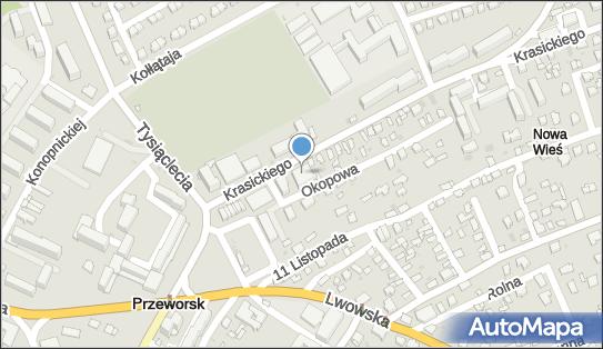 Ośrodek Szkolenia Kierowców Rajd J Paluch w Pieniążek 37-200 - Przedsiębiorstwo, Firma, NIP: 7941661588
