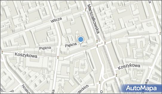 Praktyka Lekarska Tomasz Domański, ul. Piękna 31/37, Warszawa 00-677 - Przedsiębiorstwo, Firma, NIP: 8212446791