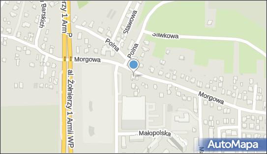 Pro Dek, ul. Morgowa 20, Rzeszów 35-301 - Przedsiębiorstwo, Firma, NIP: 8131661404