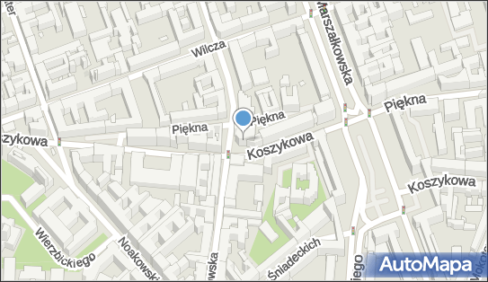 Process Solutions Poland, ul. Koszykowa 54, Warszawa 00-675 - Przedsiębiorstwo, Firma, numer telefonu, NIP: 1070009314