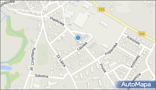 Przedszkole Publiczne, Lipowa 5, Nowe Miasteczko 67-124 - Przedsiębiorstwo, Firma, numer telefonu, NIP: 9251732188