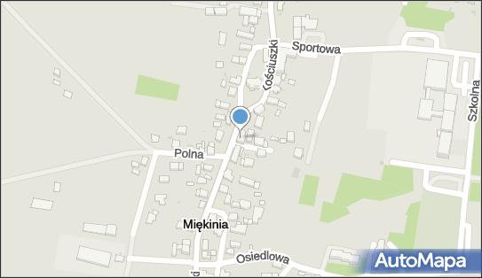 Przemysław Więcław, ul. Kościuszki 29, Miękinia 55-330 - Przedsiębiorstwo, Firma, NIP: 9131616999