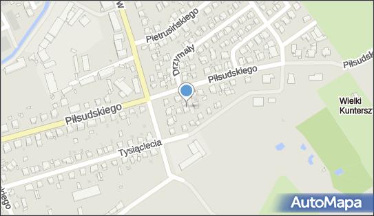 Salon Dla Psa i Kota Europies, ul. marsz. Józefa Piłsudskiego 134A 86-300 - Przedsiębiorstwo, Firma, numer telefonu, NIP: 8761183604