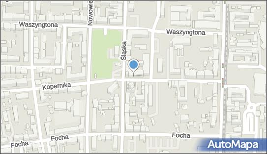Sega Polska, ul. Kopernika 22, Częstochowa 42-217 - Przedsiębiorstwo, Firma, numer telefonu, NIP: 5842650480