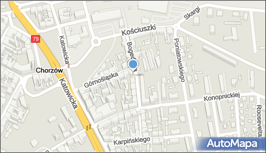 Szkolenia i Doradztwo Personalne Kantorowicz, Chorzów 41-500 - Przedsiębiorstwo, Firma, NIP: 6271066451