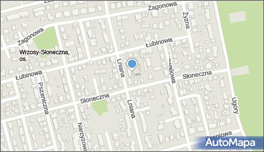 Tomasz Krzemiński, Lniana 48, Toruń 87-100 - Przedsiębiorstwo, Firma, numer telefonu, NIP: 5591658106