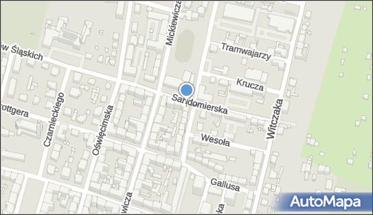 Transport Pasażerski, ul. Powstańców Śląskich 1 C, Bytom 41-902 - Przedsiębiorstwo, Firma, NIP: 6261251655