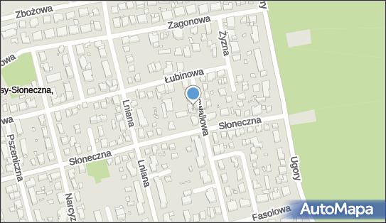 Usługi Transportowe Sobtrans, Konwaliowa 77, Toruń 87-100 - Przedsiębiorstwo, Firma, numer telefonu, NIP: 9560011179