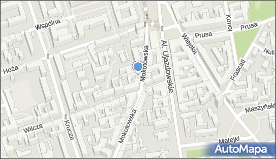Usługi Transportowe Towarowe Krajowe, Mokotowska 65, Warszawa 00-533 - Przedsiębiorstwo, Firma, NIP: 5261540212