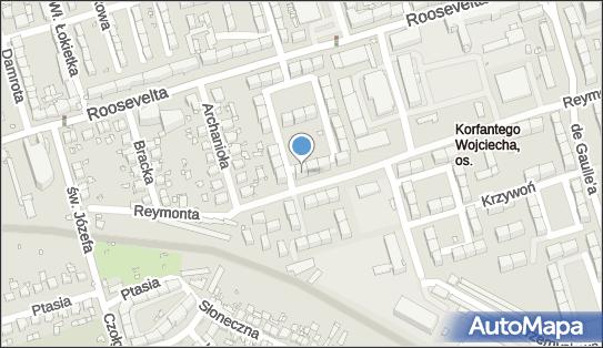 Usługi Transportowe, ul. Władysława Reymonta 35, Zabrze 41-800 - Przedsiębiorstwo, Firma, NIP: 6482235790