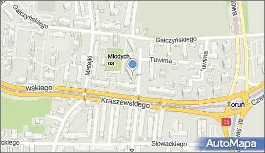 Wieczorek Leszek, ul. Stanisława Moniuszki 43, Toruń 87-100 - Przedsiębiorstwo, Firma, NIP: 9561261814