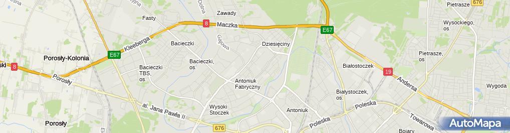 Zdjęcie satelitarne DWD Doradztwo