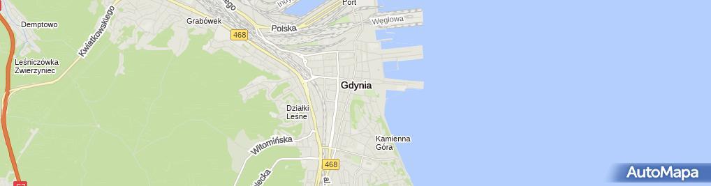 Zdjęcie satelitarne Forum Kultury
