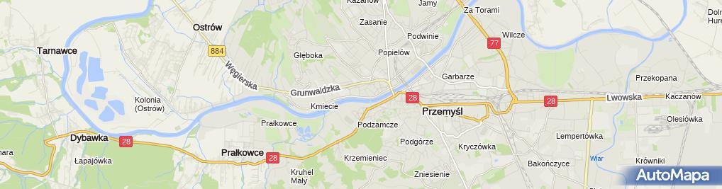 Zdjęcie satelitarne Najem Lokalu Stanisław Typrowicz