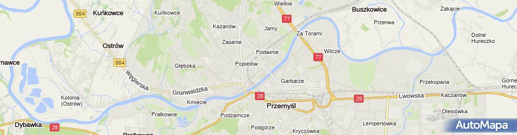 Zdjęcie satelitarne Najem Lokalu Tadeusz Godzień