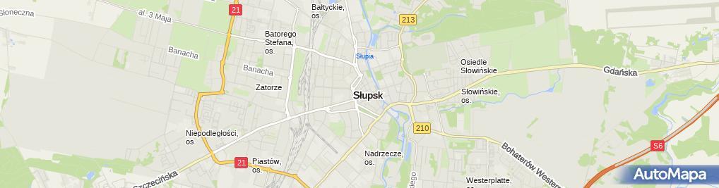 Zdjęcie satelitarne Pietrykowska Sklep Maxi