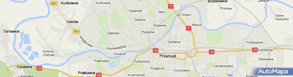 Zdjęcie satelitarne Wynajem Lokali