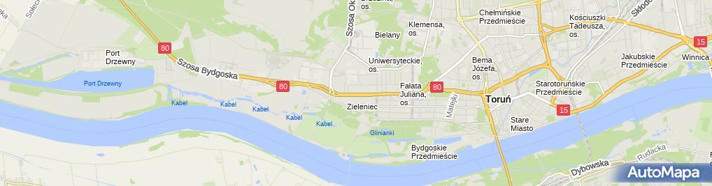Zdjęcie satelitarne Agata Kołodzińska Asymetria Pracownia Architektury