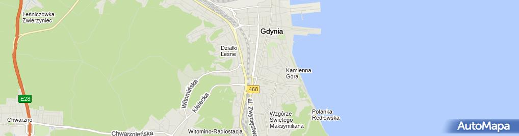 Zdjęcie satelitarne Agencja Obrotu Nieruchomościami