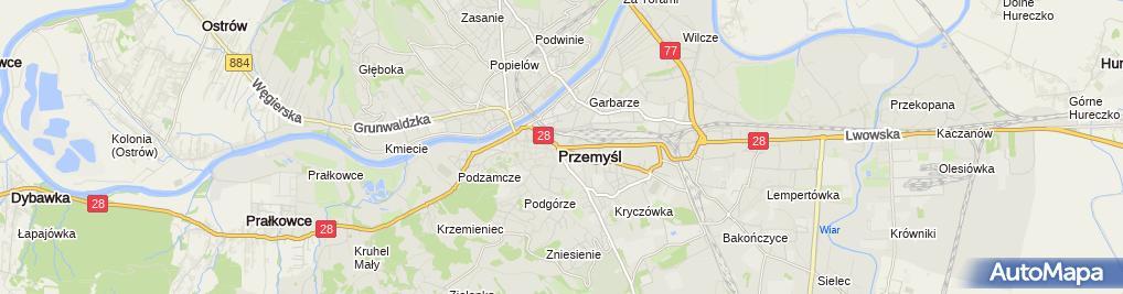 Zdjęcie satelitarne Nieruchomości Alicja Galiszkiewicz Spółka Jawna