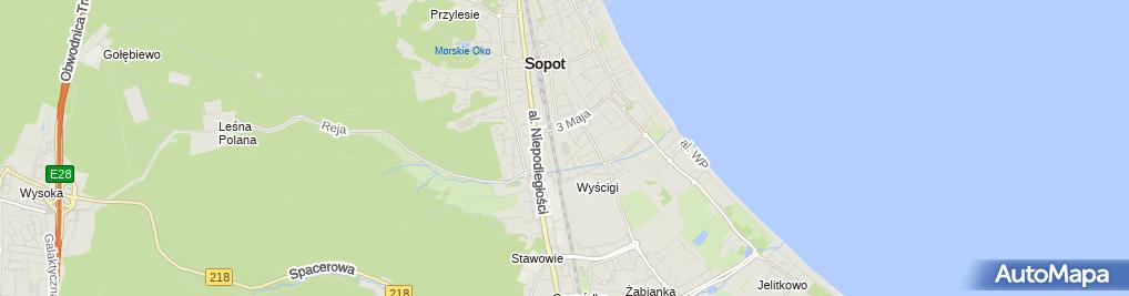 Zdjęcie satelitarne Stadion Miejski - MKS Ogniwo