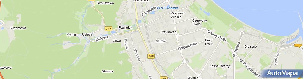 Zdjęcie satelitarne Sklepy Metalowe Dźwignia Płonowski