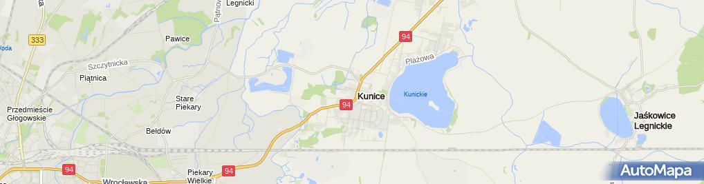 Zdjęcie satelitarne Budrim sp. z o.o.