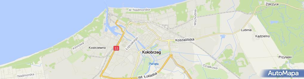 Zdjęcie satelitarne Firma Remontowo-Budowlana Jacek Lewicz