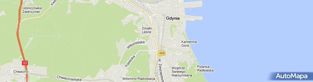Zdjęcie satelitarne Gdyńskie Przedsiębiorstwo Wielobranżowe Ren