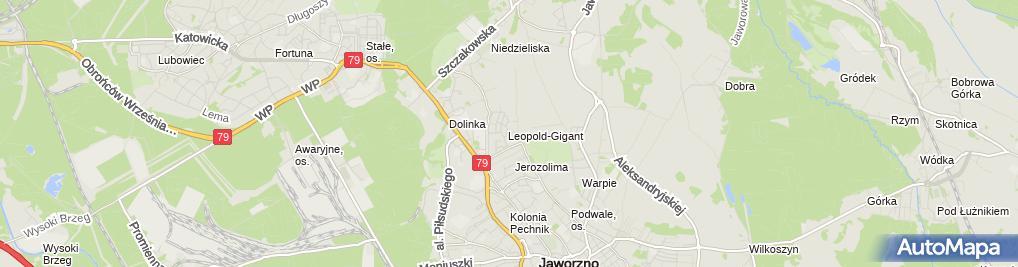 Zdjęcie satelitarne Lewandowski Tomasz Termobudowa