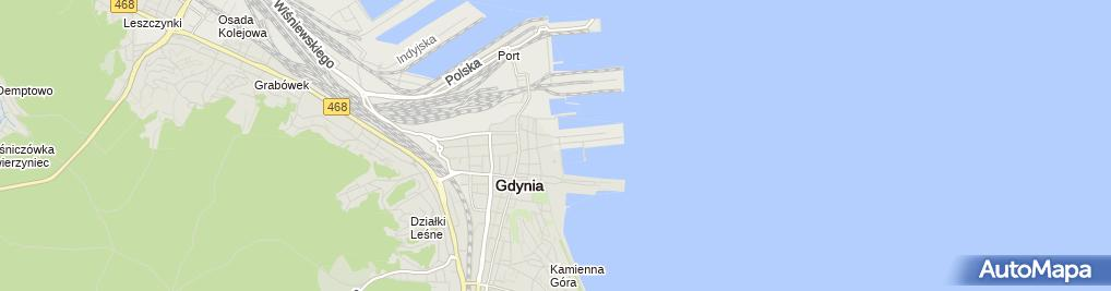 Zdjęcie satelitarne Pro Realizacja