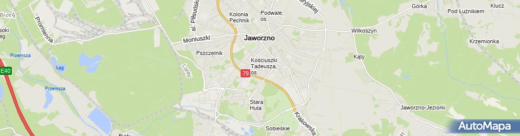 Zdjęcie satelitarne T D D Tynk Tomasz Kozłowski Dariusz Szydek Damian Okólski