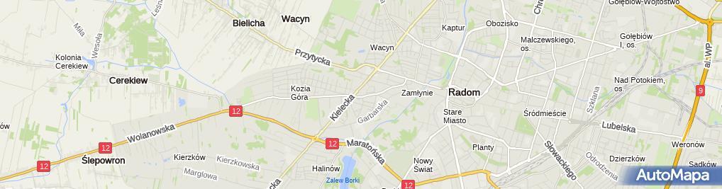 Zdjęcie satelitarne Usługi Dźwigowe